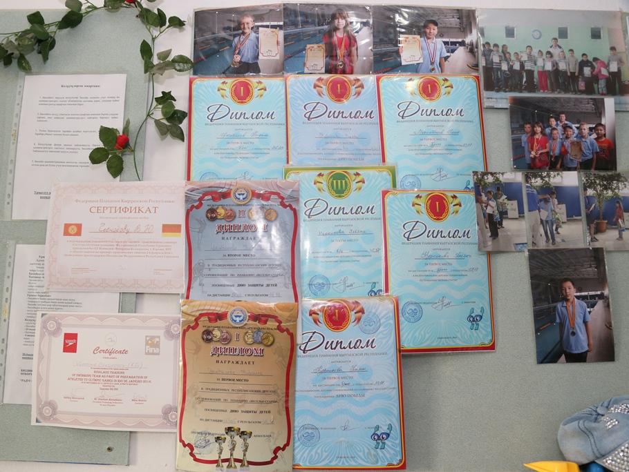 Награды и рекордсмены бассейна