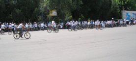 Веломарш в Бишкеке